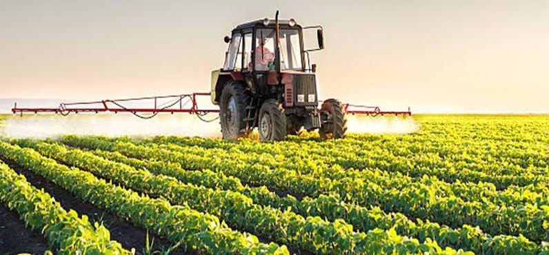 Permintaan akan pangan tidak akan pernah berkurang. Oleh karena itu, agribisnis merupakan salah satu bidang UMKM yang sangat potensial.